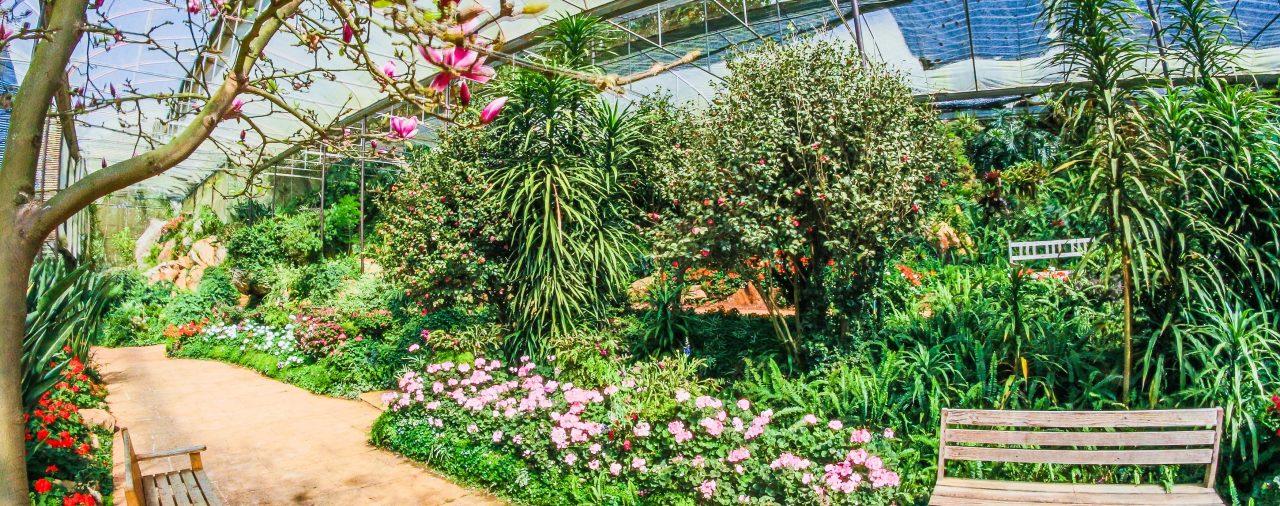 Tendencias en jardinería para 2018